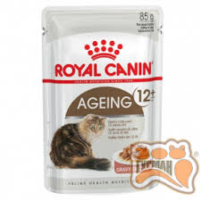 royal canin влажный корм