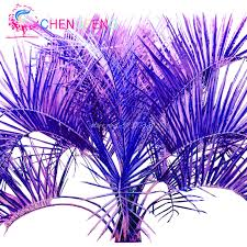 30 sago palm tree seed colorful perennial bonsai tree plants diy home garden decoration plant funny bonsai tree office table