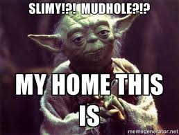 SLIMY!?! MUDHOLE?!? MY HOME THIS IS - Yoda | Meme Generator via Relatably.com