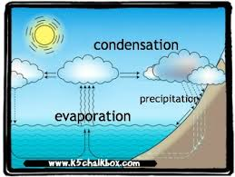 make a water cycle diagram for kids