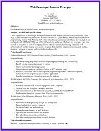 resume sforce developer resume template sforce developer resume templates full size