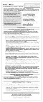 sample résumé global e commerce e business executive testimonials certified resume writer