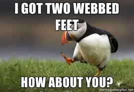 I got two webbed feet How about you? - Unpopular Opinion Puffin ... via Relatably.com