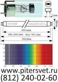 <b>Бактерицидная лампа Philips</b>, TUV 30W, цена - купить у Компания ...
