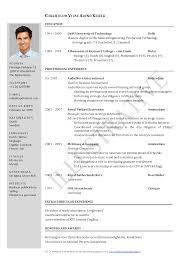 resume examples biodata simple format resume format to word resume examples update resume cv template in word update word format