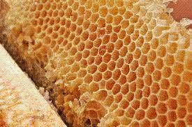 சர்க்கரை நோயாளிகளின்  காயங்களை ஆற்றக்கூடிய மருந்து தேன்