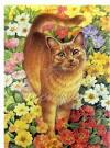 Раскраска рыжего кота