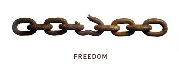 Image result for pics of Freedom