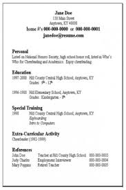 basic sample resumes  seangarrette cobasic sample resumes simple resume format