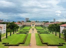 essay help for the rice university   edusson comessay help for the rice university