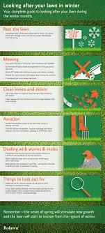winter lawn care advice rolawn winter lawn care