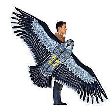 New <b>Toys</b> 1.8m <b>Power</b> Brand Huge Eagle <b>Kite</b> With String And ...