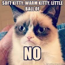Soft Kitty, Warm Kitty, Little Ball Of ... NO - Grumpy Cat Meme ... via Relatably.com