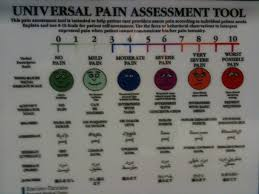 imaginary career a d universal pain assessment tool we are decidedly in stage 4 the not so happy but not so sad yet face living in smaller quarters is a bit of a trick as we have absorbed the demo ed areas