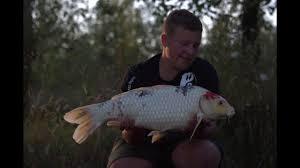 The <b>Golden Carp</b> Lake | Etang de la Carp d'Or | Carp fishing France