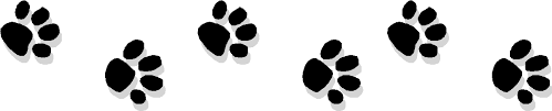 Image result for paw prints