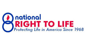 the national right to life  pro life essay contest      the national right to life  pro life essay contest