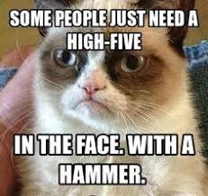 Grumpy Cat on Pinterest | Funny Grumpy Cats, Meme and Memes Humor via Relatably.com