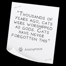 Quotes On Our Pets. QuotesGram