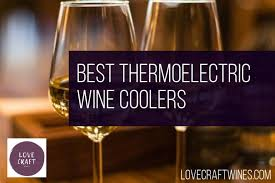 Top 21 Best <b>Thermoelectric Wine</b> Coolers (2019 Review)🥇