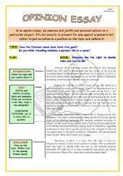 paragraph essay outline FAMU Online