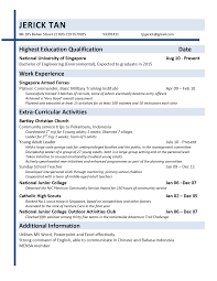resume application cv template resume examples professional communication principles and practice application