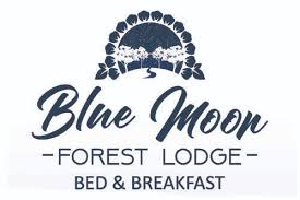 Blue <b>Moon Forest</b> Lodge | Luxurious family accommodation near ...