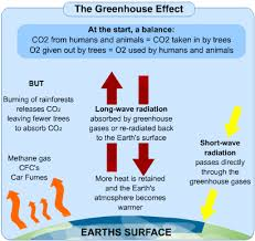 causes and effects of global warming  s cool the revision website causes and effects of global warming
