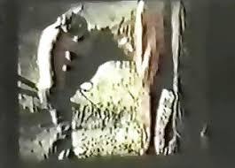 Granja Videos Porno / Amateur bestialidad XXX / Más largo Página 1