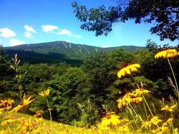 Image result for vermont summer