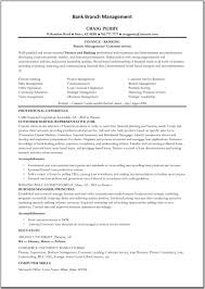 banking s experience resume