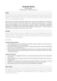 based resume example skill based resume examples  seangarrette cobased