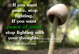 Inner Peace Quotes and sayings, Peace Of Mind Quotes ... via Relatably.com