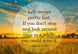 Image result for slow down quotes