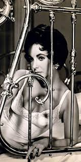 best images about cat on a hot tin roof stylists 1950 s lingerie elizabeth taylor in helen rose cat on a hot tin roof
