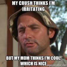 my crush thinks I'm irritating but my mom thinks I'm cool, which ... via Relatably.com