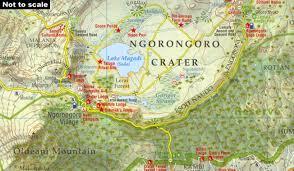 Resultado de imagen para Ngorongoro