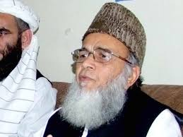 """""""We do not want Maulana Fazlur Rehman's Islamic revolution; no matter how much we condemn the blasphemous film – it is not enough,"""" said Hassan. - 444778-hassan-1349017715-715-640x480"""