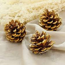 15-Piece Gold Tipped Real Natural Dried Pine Cones ... - Amazon.com