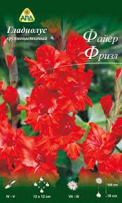АПД <b>Гладиолус</b> Файер Фризл / A30203 (10шт) Семена цветов ...