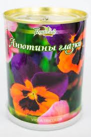 <b>растение bontiland</b> анютины глазки 410428 | estprazdnik.ru