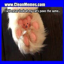 Clean Memes   Clean Memes – The Best The Most Online   Page 320 via Relatably.com
