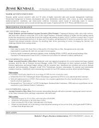 s executive curriculum vitae format cipanewsletter resume examples templates s executive s representative