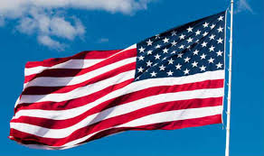 Image result for usa flag copyright free