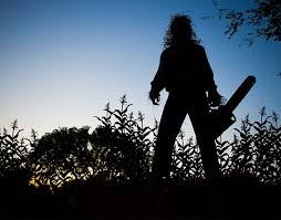 Man assumed the risk of injury from <b>chainsaw</b>-wielding ...
