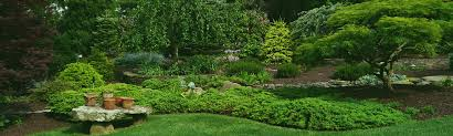 Small Picture Garden Design Morningside Landscaping and Gardens