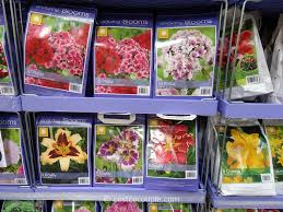 miracle gro moisture control potting mix costco vs home depot enduring blooms spring perennial assortment bulbs