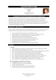 travel consultants resume s consultant lewesmr sample resume it consultant resume exles sles