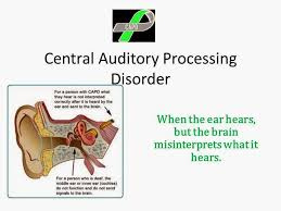 BishopBlog  Auditory processing disorder  APD   Schisms and skirmishes