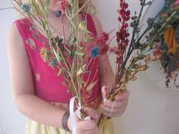 Image result for dry flowers images